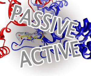passiveactive